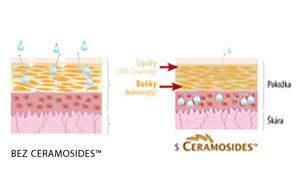 Fytoceramidy - Sedmikráska